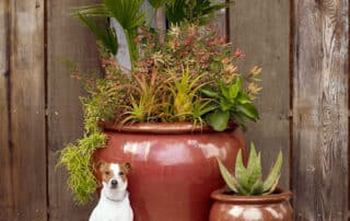 Heritage Salvage commercial residential landscaping 10