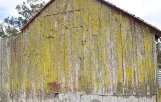 Heritage Salvage Barn Doors 34