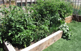 Heritage Salvage commercial residential landscaping 18