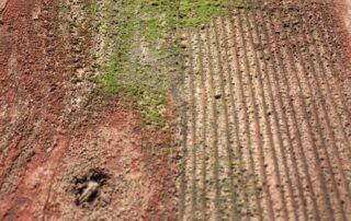 Heritage Salvage reclaimed barnwood barndoors 18
