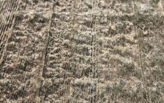 Heritage Salvage reclaimed barnwood barndoors 19